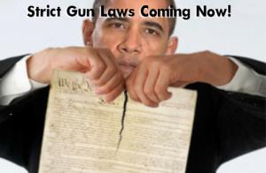wpid-obama-strict-gun-laws-coming.png